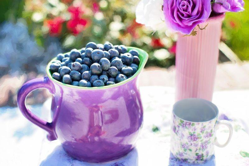 a purple glass jug filled with blueberries to represent where to buy fresh blueberries online