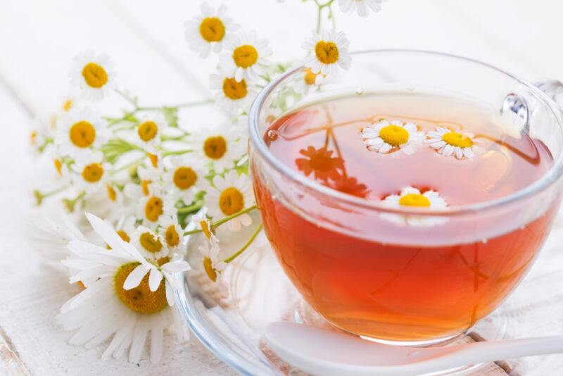 a closeup image of a glass cup and saucer of  chamomile tea with a couple of chamomile flowers in it, and a bunch of chamomile flowers beside it