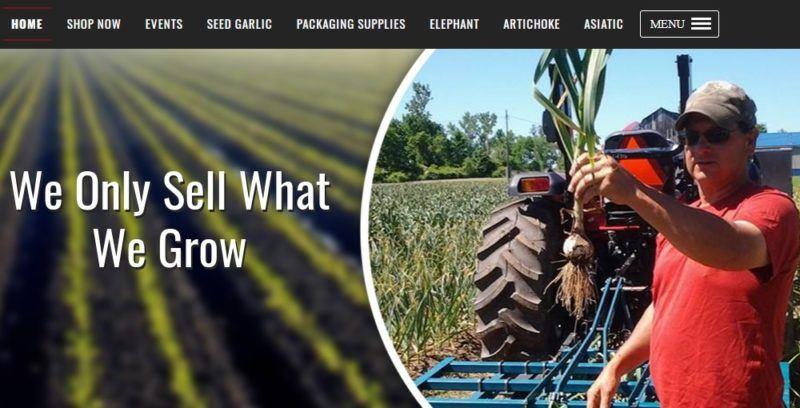creekside garlic farm home page