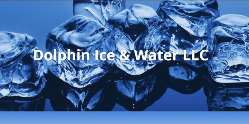 dolphin ice home page