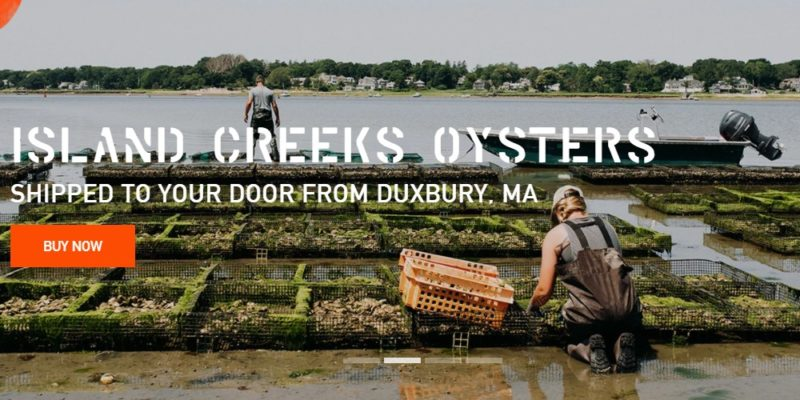 island creek oysters home page