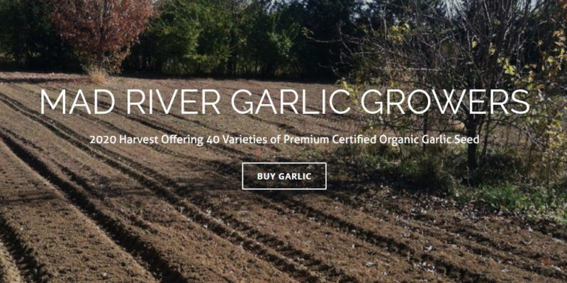 mad river garlic growers home page
