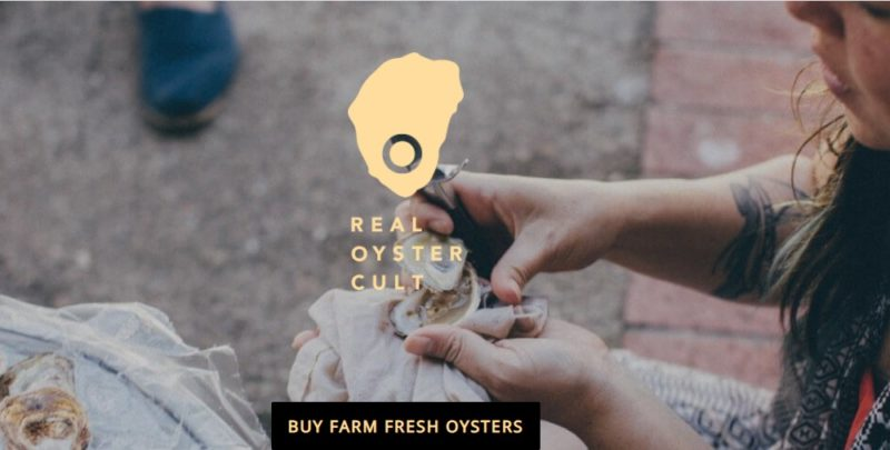real oyster cult home page