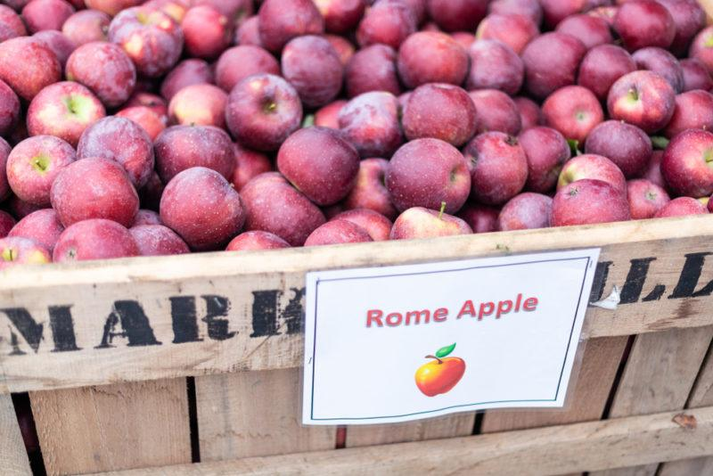 rome apples for making hard apple cider