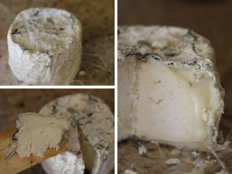 soft-ripened-goat-cow-milk-cheese