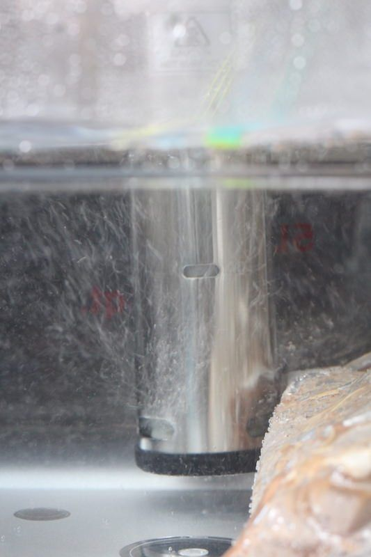 Gourmia GSV130 Immersion Circulator Cooking Salmon Sous Vide. Focus is on the pump and water bubbles
