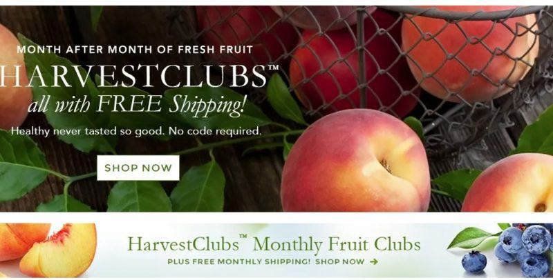 The Fruit Company home page showing peaches and leaves