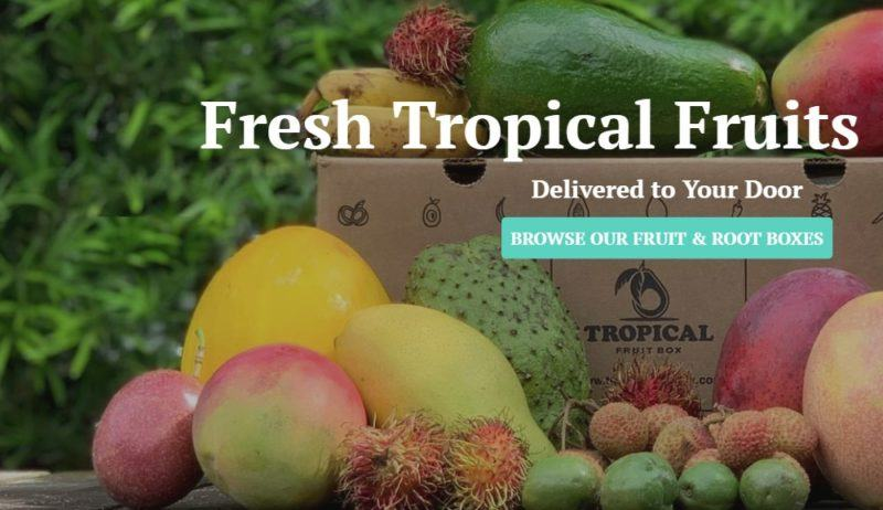 tropical fruit box home page