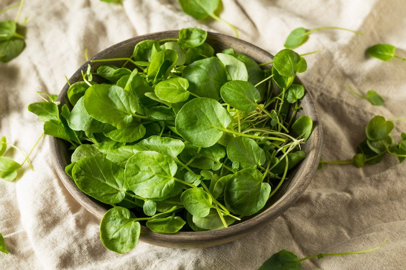 a closeup image of a brown wooden bowl full of Watercress resting on a brown cloth with loose watercress around it